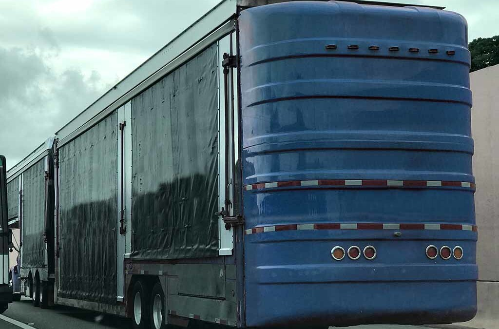 Enclosed Auto Transport – What is it & When to Use It