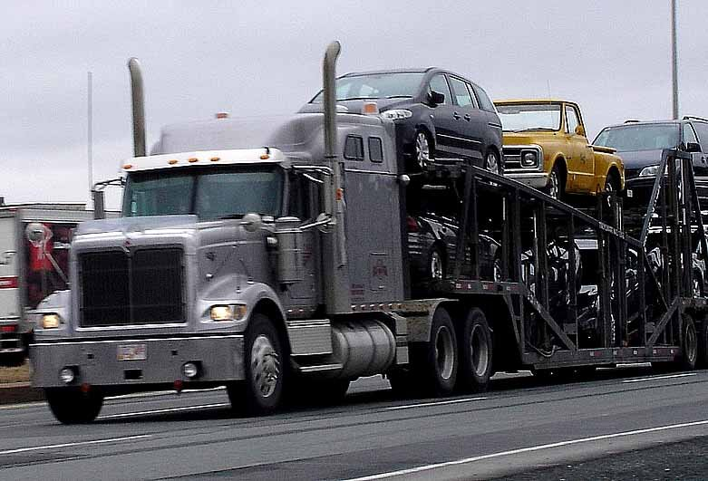 carrier full of cars on a road